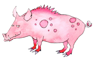 Pig Chinese astrology
